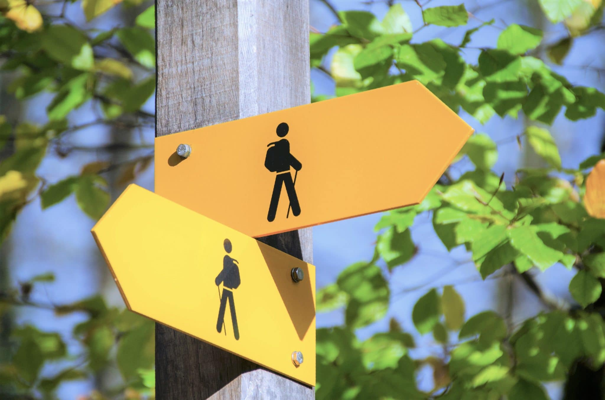 Signpost with two yellow arrows, one pointing left and the other pointing right, both displaying symbol of hiking person. Refers to alternatives to preliminary buyer walkthroughs.